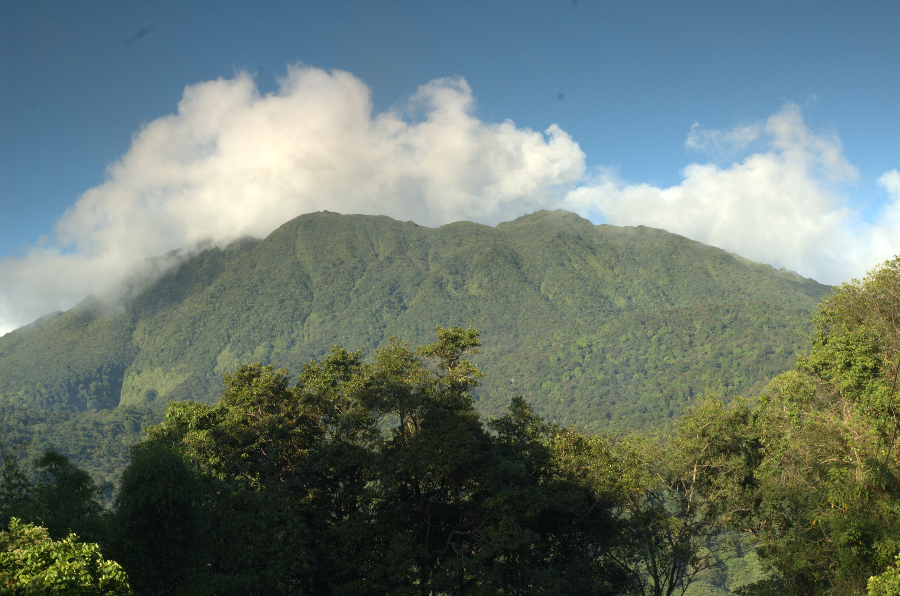 The Heart of Dominica (4)